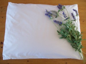 organic-buckwheat-pillow-lavender__12649_zoom